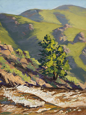River Rafting Painting - Poudre Rapids by Mary Giacomini