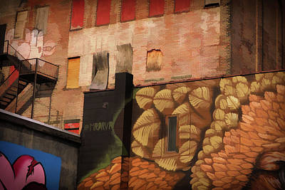 Photograph - Poughkeepsie Street Art by Nancy De Flon