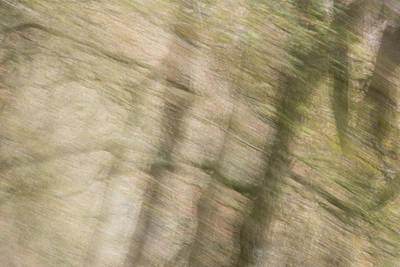 Photograph - Poulanass Abstract1 by Niall Whelan