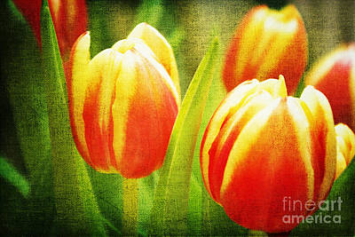 Power Of Spring Art Print