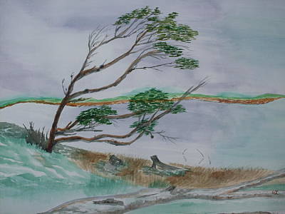 Powerful Winds Of Tierra Del Fuego Argentina  Art Print