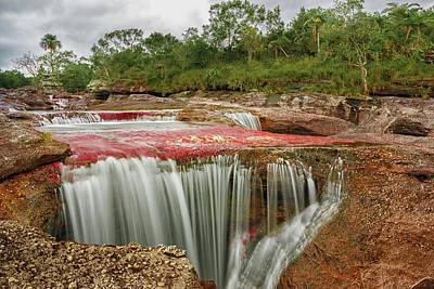 Photograph - Pozo Del Corazon Cano Cristales La Macarena Colombia by Adam Rainoff
