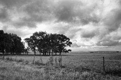 Photograph - Prairie After The Rain Black And White - Landscape Photography  by Ann Powell