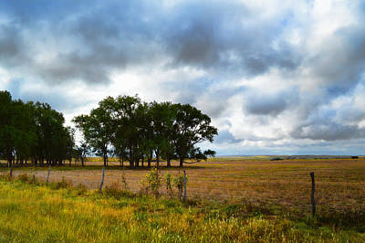 Photograph - Prairie After The Rain - Landscape Photography by Ann Powell