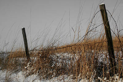 Photograph - Prairie And Fence by Dylan Punke