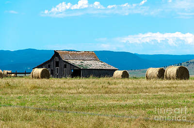 Photograph - Prairie Barn by Mary Carol Story