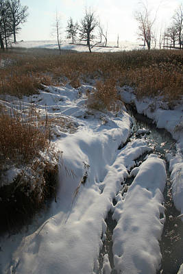 Photograph - Prairie Creek Winter by Dylan Punke