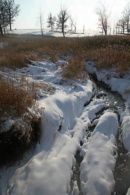 Photograph - Prairie Creek Winter by Dylan Punke