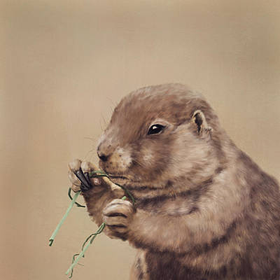 Painting - Prairie Dog by Mandy Tabatt