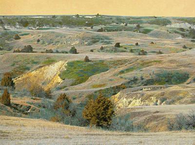 Photograph - Prairie Dream Of Spring by Cris Fulton