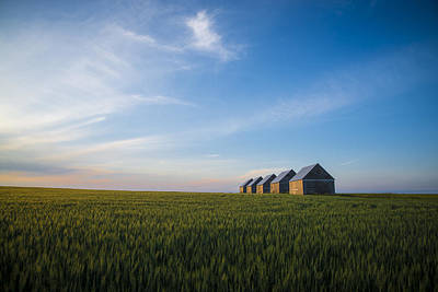Prairie Sunset Photograph - Prairie Evening by Bill Cubitt