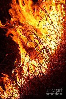 Photograph - Prairie Grass Fire by E B Schmidt