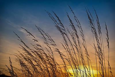 Prairie Grass Sunset Print by Steve Gadomski