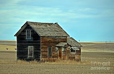 Photograph - Prairie Home  by Chalet Roome-Rigdon