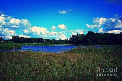 Frank J Casella Royalty-Free and Rights-Managed Images - Prairie Lake by Frank J Casella