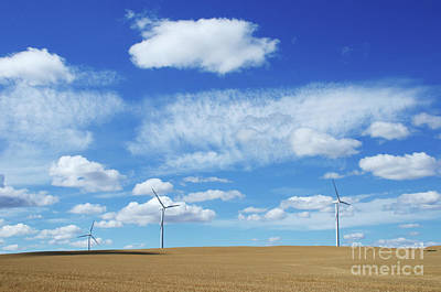 Prairie Landscape Alberta Canada Art Print