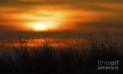 Prairie Sunset Photograph - Prairie Like... by Nina Stavlund