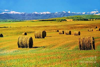 Photograph - Prairie Moutains And Fields by Elaine Manley