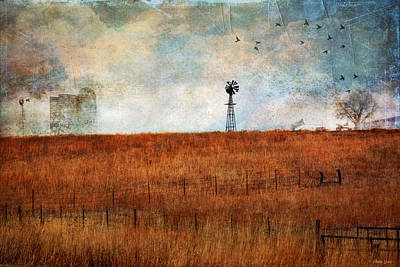 Photograph - Prairie Past by Anna Louise