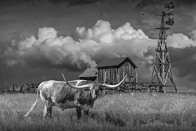 Photograph - Prairie Pasture With A Longhorn Steer by Randall Nyhof