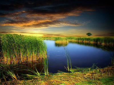 Photograph - Prairie Pond 2 by William Tanata