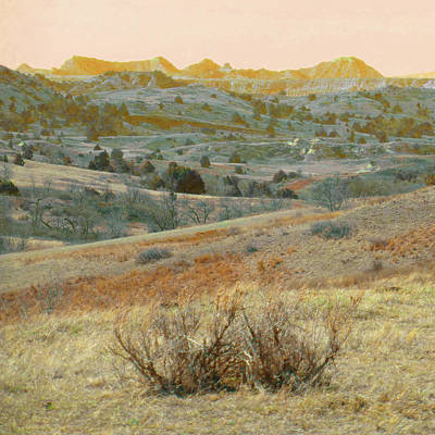 Photograph - Prairie Realm Reverie by Cris Fulton