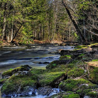 Photograph - Prairie River Mossy Rocks by Dale Kauzlaric