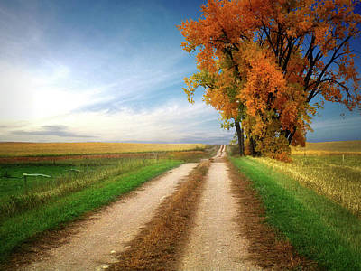 Photograph - Prairie Road 11 by William Tanata