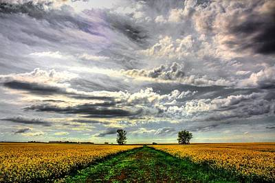 Photograph - Prairie Sky 2 by David Matthews
