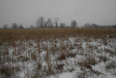 Photograph - Prairie Snow by Dylan Punke