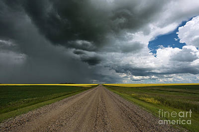 Gravel Road Photograph - Prairie Summer Road by Ian McGregor