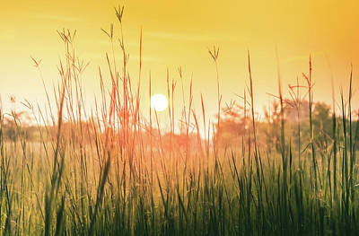 Photograph - Prairie Sunrise by Dan Sproul