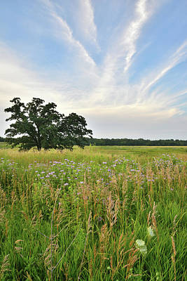 Photograph - Prairie Sunset At Silver Creek Conservation Area by Ray Mathis