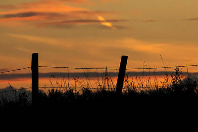 Photograph - Prairie Sunset by Inge Riis McDonald