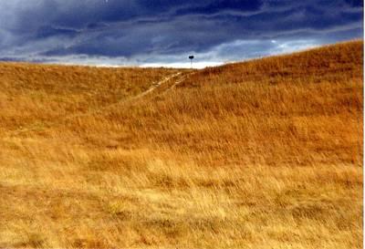 Konza Prairie Photograph - Prairie Thunderstorm by Jared May