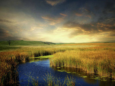 Photograph - Prairie Waters 5 by William Tanata