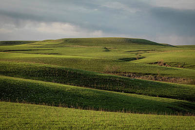 Photograph - Prairie Waves by Scott Bean