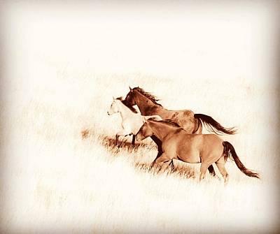 Rustic Photograph - Prairie Wild  by Amanda Smith