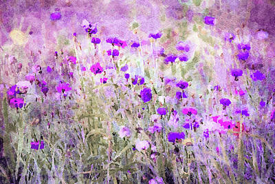 Mixed Media - Prairie Wildflowers by Susan Maxwell Schmidt
