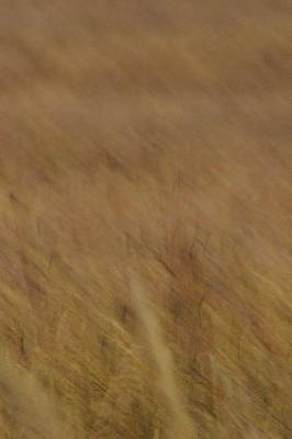 Photograph - Prairie Wind #4 by Tim Good