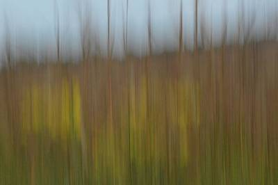 Photograph - Prairie Wind #5 by Tim Good