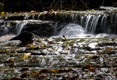 Photograph - Prather-creek-rapids by Fred Lassmann