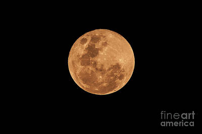 Photograph - Post-penumbral Moon by Venura Herath