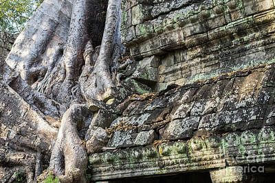 Photograph - Preah Khan Roots And Stone 03 by Rick Piper Photography