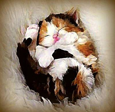 Pet Wall Art - Digital Art - Precious Purrbaby by Raven Hannah