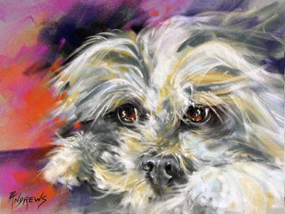 Shih Tzu Painting - 'precious' by Rae Andrews