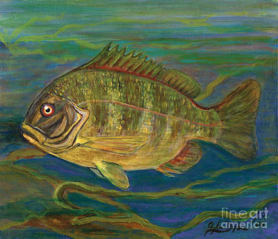 Predatory Fish Art Print