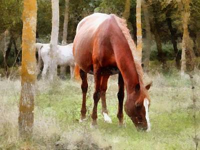 Digital Art - Pregnant Tan Mare Grazing by Dorothy Berry-Lound
