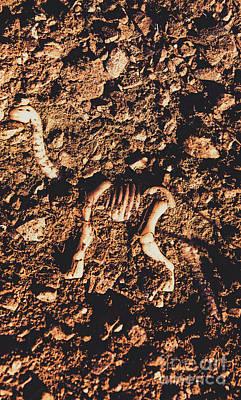 Prehistoric Diplodocus Bones Art Print