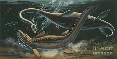 Underwater View Painting - Prehistoric Marine Animals, Underwater View by American School